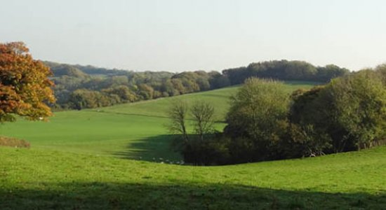 A view from the North Downs Way, towards Big Coombe