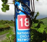 National Cycle Route 18 connects Canterbury to Royal Tunbridge Wells via Wye. NCR18 is 61 miles long and it takes in some of Kent's best scenery.