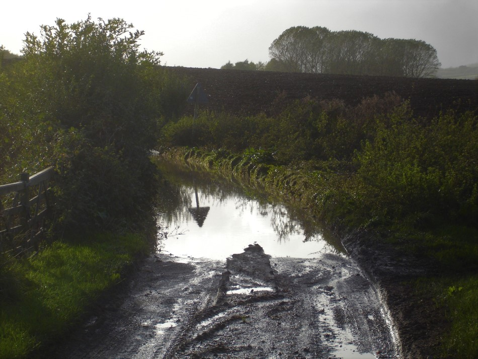 A flooded lane and blind bend near Crundale. This symbolises the decades of under-investment in basic repairs and maintenance of the network of lanes that connect Wye and the surrounding farms and villages in the Kent Downs