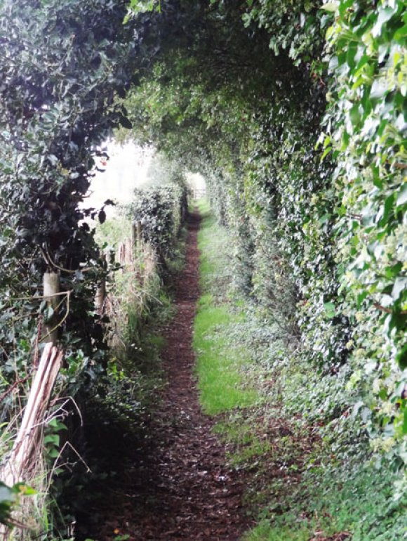 Public Footpath AE112 between Wye Church and Wye Court after its end of summer trim