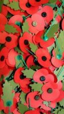 Poppy Appeal Launch - Wye and District